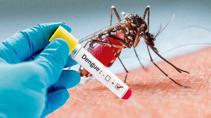 Những biến chứng của bệnh sốt xuất huyết